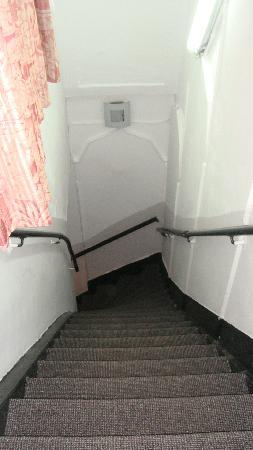 Hotel de Stern: Stairs