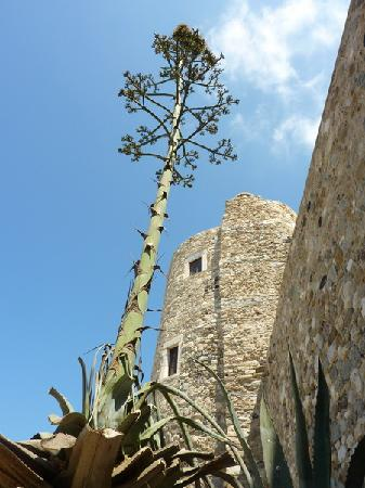 Наксос, Греция: Naxos chora - Castle