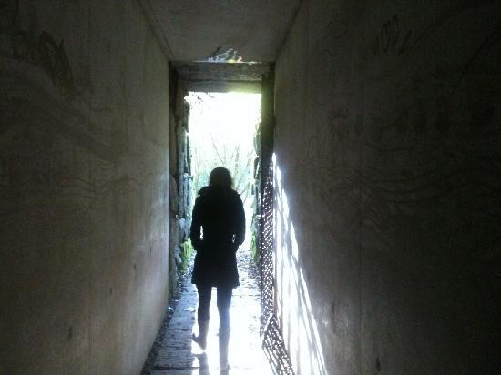 Liss Ard Estate: Sky Garden tunnel