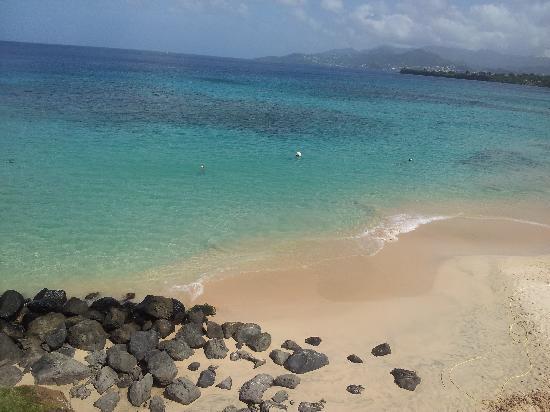 Grenadian by Rex Resorts : Beach
