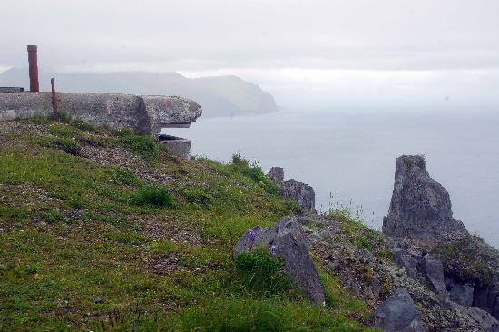 The Extra Mile Tours In Dutch Harbor