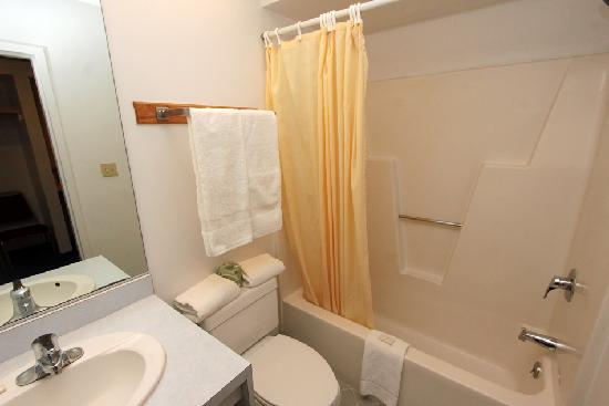 Nittany Budget Motel: Clean, efficient bathrooms.