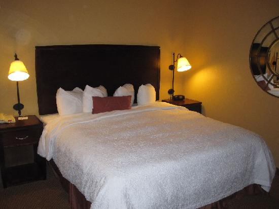 Hampton Inn & Suites San Antonio Airport: King Bed