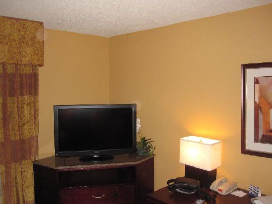 Hampton Inn & Suites San Antonio Airport: TV and Desk