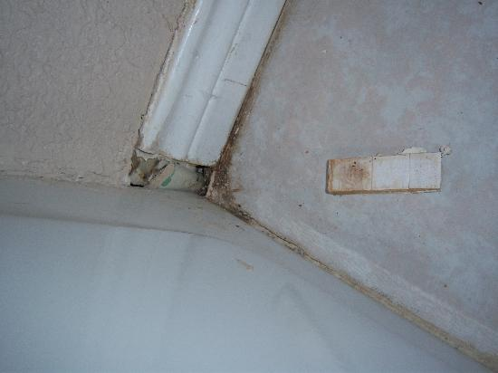 Econo Inn Lackland: Nasty hole where the roaches were coming in.
