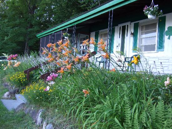 The Shamrock Motel: cottage with garden