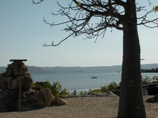 Kimberley Coastal Camp: View as you exit your bungalow