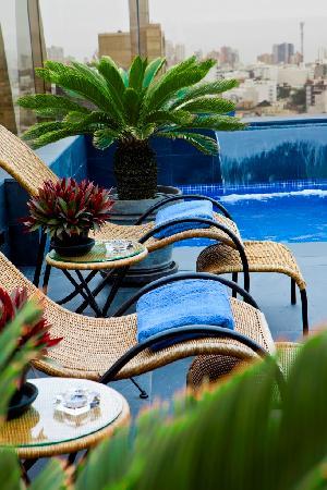 Royal Park Hotel : Terraza y piscina