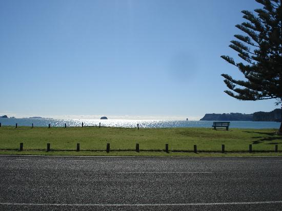 Oceanside Motel Whitianga: View from hotel to the beach