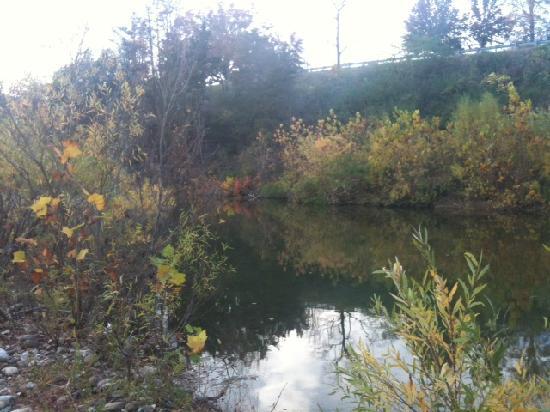The Little Buffalo River runs right behind the Arkansas House.