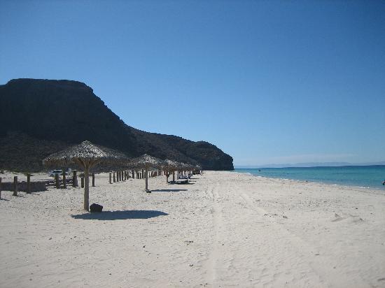 Playa El Tecolote (Tecolote Beach): Public palapas
