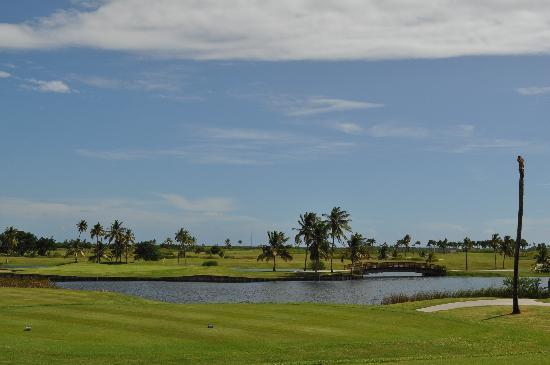 Hilton Ponce Golf & Casino Resort : Island Green