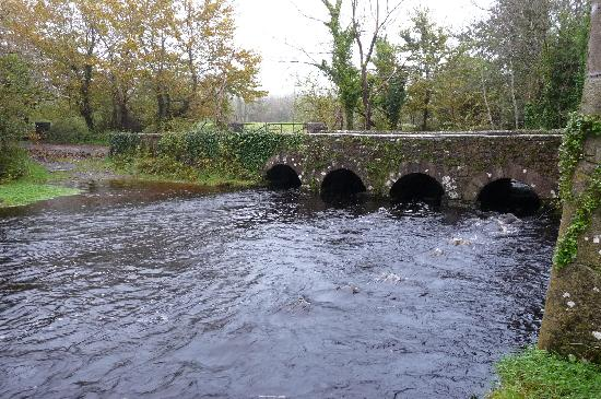 Thoor Ballylee: the river
