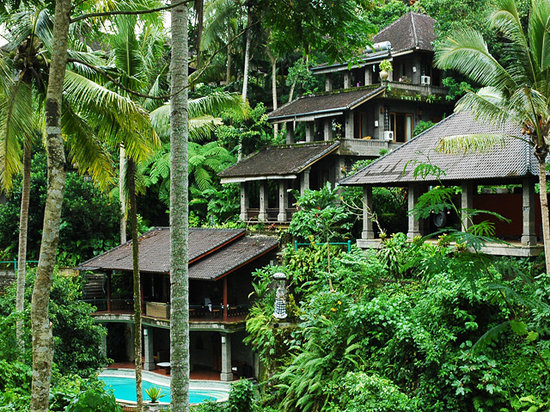 Oneworld retreats Kumara: Our retreat is set in the jungle!