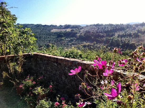 Il Poggiolo Bed & Breakfast: View from the terrace