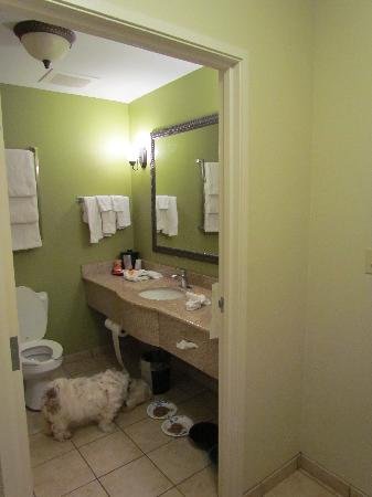 La Quinta Inn & Suites Panama City Beach Pier Park: Refreshing bright colors and clean bathroom