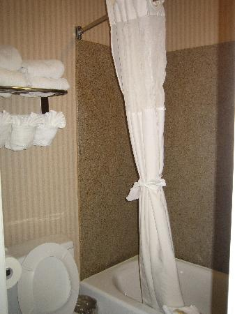 Quality Inn & Suites - Anaheim Resort: タオルもたくさん補充してくれます