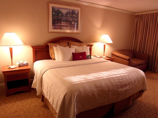 Crowne Plaza Hotel Executive Center Baton Rouge: Room 607-- super comfy bed