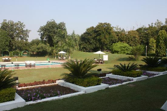 โรงแรม เดอะ เรดิสัน แจ๊ส คาจูราโฮ: Jardins et piscine