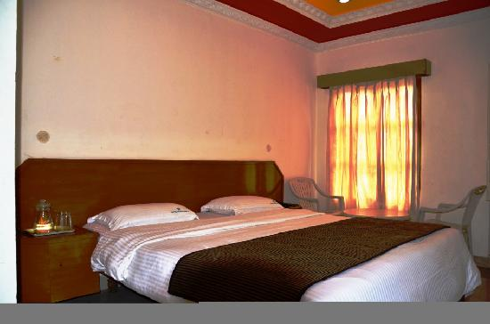 Hotel Gurupriya : Executive Room