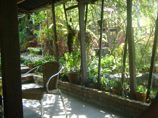 surrounding views of Rom's homestay and restaurant