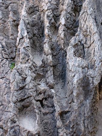 Monument of Shih-tsu Taking over Yunnan: foresta di pietra