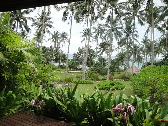 Shantaa Koh Kood: view from the room