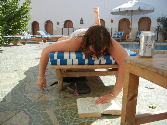 Dahab Plaza Hotel: Lazing by the pool with kittens