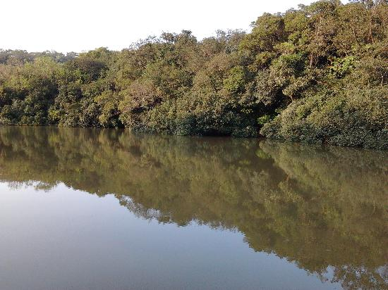 Hope Hall: The Lake at Matheran