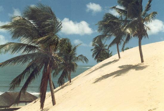 Наталь: Praia de Genipabu, Natal, Brazil