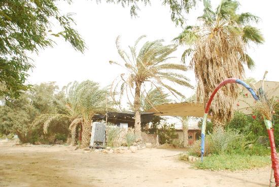 Desert Ashram: Entrance