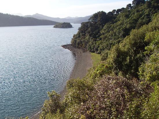 Bayview Backpackers : Local walks showcase stunning views