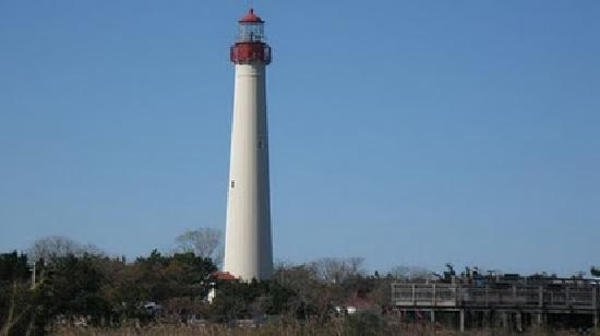 Surrey Beach House: A short drive down to Cape May!