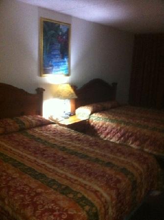 Hotel Roma Golden Glades Resort: room
