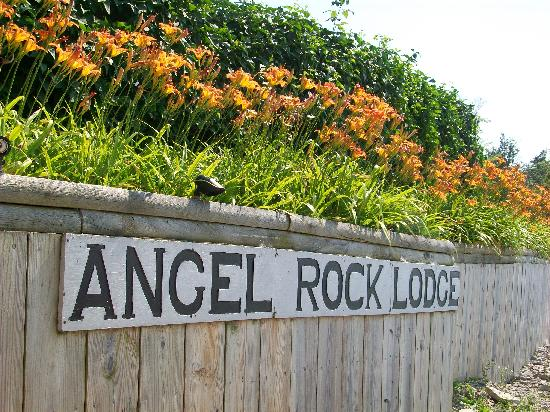 Angel Rock Waterfront Cottages : Tiger lillies along the shore