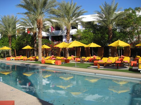 The Saguaro Scottsdale Picante Pool Picture Of Saguaro Scottsdale Scottsdale Tripadvisor