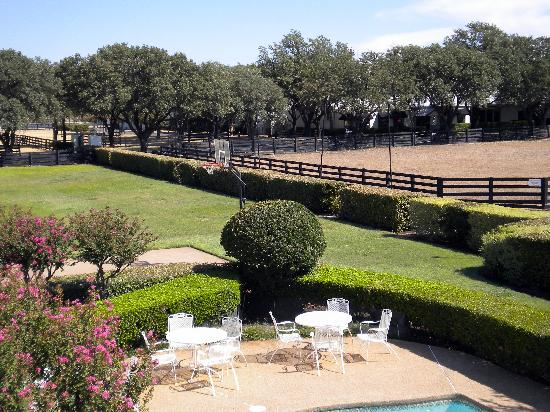 Southfork Ranch: I always wanted to have a pool