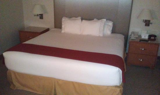Holiday Inn Express Warwick/Providence: King Bed (Sorry for the dark photo)