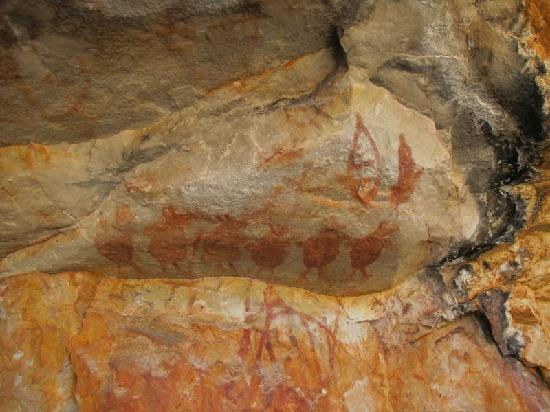 Kimberley Coastal Camp: Rock art