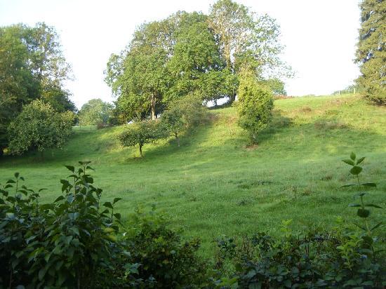 Le Moulin au Fil de l'Eau : Extensive grounds