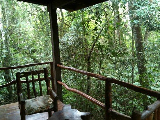 La Aldea de la Selva Lodge: My balcony