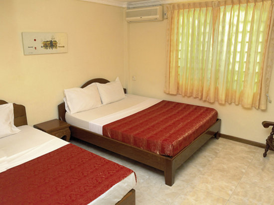 The Dancing Frog Hostel : Superior Twin A/C room