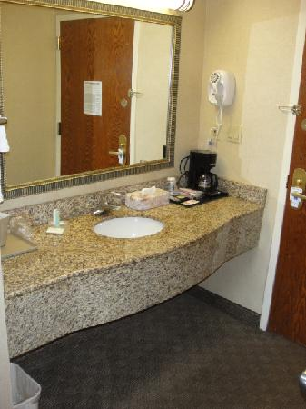 Comfort Inn Edison: Sink - Outside shower/toilet area.