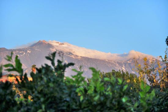 Agriturismo Il Limoneto: View of Etna from Il Limoneto
