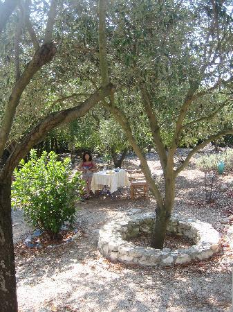 Janet Art Pension: Breakfast in the garden