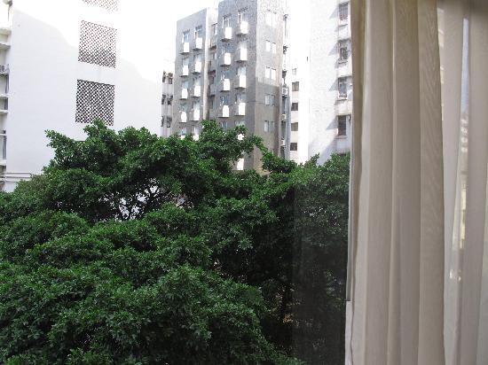 Stanford Hillview Hotel: Вид из окна номера на 6-ом этаже