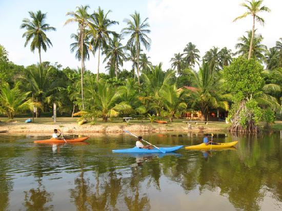 Enjoy the Kayak Riding in the lagoon of Lagoon Paradise Beach resort.