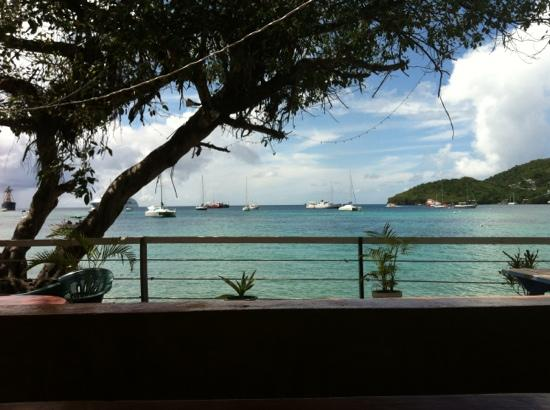 The Fig Tree: The beautiful view from Fig Tree!