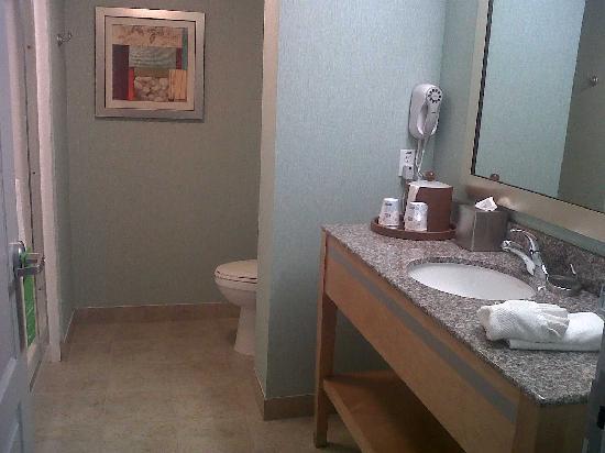 Hampton Inn & Suites Sarasota-Bradenton Airport: Awesome shower!