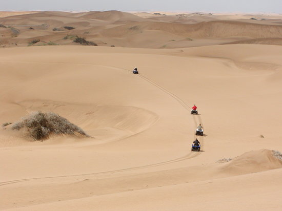 Kuiseb Delta Adventures : Ouad bikes in the dunes